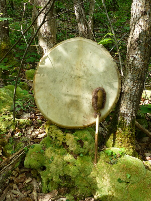 shamanic drum deerskin
