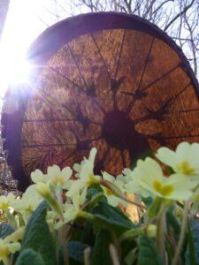 shamanic drum for meditation, nature, groups