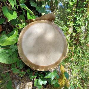 travel or childrens shamanic drum